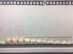 Math: Measurements/ Weight with rice (4.grade) in Norway.  Matematikk: Måling av vekt med ris i 4.klasse.