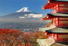 O Japão, em japonês Nihon ou Nippon, se destaca pelas várias atrações turísticas voltadas, principalmente, para a história, arte e cultura. Localizado na Ásia Oriental, é formado por 6.852 ilhas. A maior parte das ilhas é montanhosa e com muitos vulcões como o famoso Monte Fuji, mais alto pico japonês com 3.776 metros. Explore a cultura milenar do Japão viajando com a NewAge! #NewAge #Viagem #Turismo #Japao