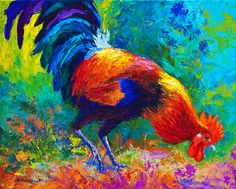 Scratchin - Rooster Fine Art Print - Marion Rose