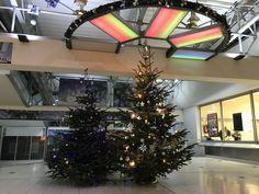 Es weihnachtet schon sehr im Kaufpark-Freiberg! Christmas Tree, Holiday Decor, Home Decor, Stuttgart, Shopping, Culture, Weihnachten, Teal Christmas Tree, Holiday Tree