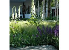 fluffy grass and flower combo Pocket Park, Grass, Aquarium, Chelsea, Planting, Flowers, Inspiration, Design, Garden