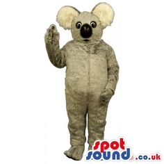 #koala #mascots by #spotsound_uk -Discover all our #koala #mascots #costumes for your marketing events on: http://www.spotsound.co.uk/110-mascots-koala - 7 sizes available with fast shipping over the world ! We can also customize your future #koala #mascot ! Visit us ;)