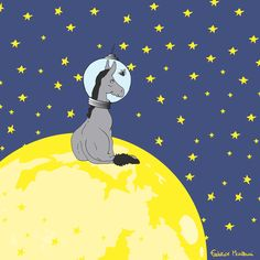 """Donkey """"Tino"""" & Co. The first donkey has been on the moon.. with a fly! by Federico Monzani"""