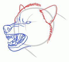 how to draw an angry wolf step 8