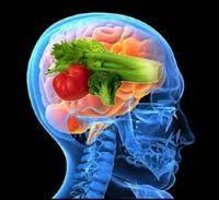 Brain Food, Good food, healthy and happy life basis, note, body nutrientsहम सब जानते हैं कि अच्छा खाना-पीना स्वस्थ व सुखी जीवन का आधार है। यदि हम खाने-पीने पर ध्यान दें, तो बीमारियां हमारे पास फटकेंगी नहीं। हम शरीर में पौष्टिक तत्वों की कमी को पूरा करने के लिए बहुत प्रयास करते हैं कि ऐसा खाएं जिससे शरीर को सुचारु रूप से काम करने के लिए शक्ति व ऊर्जा मिलती रहे और शरीर में पौष्टिक तत्वों की पूर्ति होती रहे। लेकिन क्या हम कभी दिमाग के आहार के बारे में सोचते हैं? इसका जवाब है -नहीं। आइए जानते…