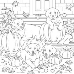 The sneak peek for the next Gift of The Day tomorrow. Do you like this one? #puppies #pumpkins ••••••••••• Don't forget to check it out tomorrow and show us your creative ideas, color with Color Therapy: http://www.apple.co/1Mgt7E5 ••••••••••• #happycoloring #giftoftheday #gotd #colortherapyapp #coloring #adultcoloringbook #adultcolouringbook #colorfy #colorfyapp #recolor #recolorapp #coloring #coloringmasterpiece #coloringbook #coloringforadults