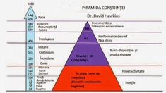 Personal Growth: Moving up the 15 Levels of Consciousness, from Dr David Hawkins Dr David Hawkins, Dr Hawkins, Cosmic Consciousness, Levels Of Consciousness, Law Of Attraction Affirmations, Negative Emotions, Spiritual Awakening, Spiritual Wisdom, Optimism