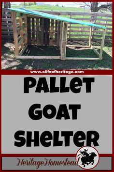 Goats Pallets Goat Shelter How to build a goat shelter using pallets. An easy and cost effective way to use easy to find material to make great winter shelters for your goats. Goat Shelter, Animal Shelter, Shelter Dogs, Animal Rescue, How To Buil, Goat Shed, Goat House, Farm House, Goat Care