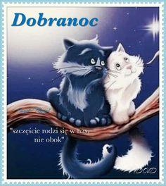 Good Night, Bom Dia, Nighty Night, Good Night Wishes