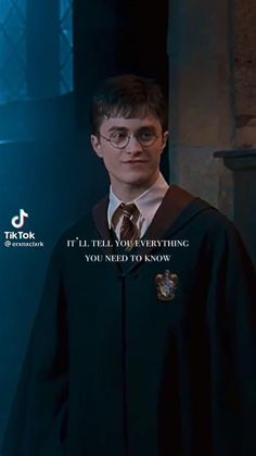 Harry Potter Gif, Young Harry Potter, Daniel Radcliffe Harry Potter, Harry Potter Poster, Harry Potter World, Ron And Harry, Hedwig, Ron Weasley, Hogwarts