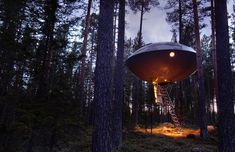 UFO treehouse at the Treehotel in Sweden