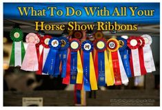 Tons of cool ideas on what to do with all of my old horse show ribbons.  I have a TON!