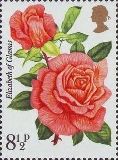 Roses 8.5p Stamp (1976) 'Elizabeth og Glamis'