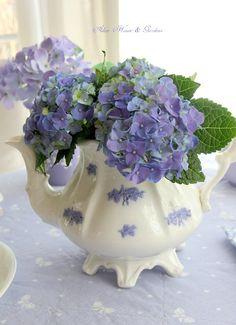 Aiken House & Gardens: A Breath of Spring (small bouquet of blue hydrangeas) Summer Centerpieces, Centerpiece Ideas, Raindrops And Roses, Lilac Blossom, Flower Arrangements Simple, Blue Hydrangea, Hydrangeas, Small Bouquet, Lavender Blue