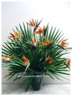 Tropical flowers like bird of paradise can always provide you the great quality of beauty with its bright colors. Tropical Flowers, Tropical Flower Arrangements, Church Flower Arrangements, Beautiful Flower Arrangements, Exotic Flowers, Beautiful Flowers, Altar Flowers, Church Flowers, Deco Floral