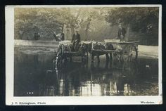 SOUTHAMPTON - Sholing area Millers Pond -  Shephard Carter's wagons watering RP