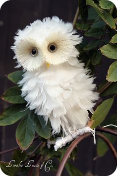 White owl by Loralee Lewis & Co, via placespill.blogspot.jp    SOOOOO Cute! Fluffy!