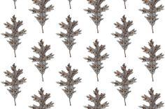 Golly Bard - Woodland collection - Silver Oak Leaf fabric by gollybard on Spoonflower - custom fabric