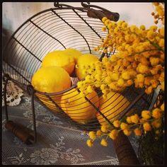 Limones y mimosas. Detalles de la decoración de nuestra Lemonade Bar.