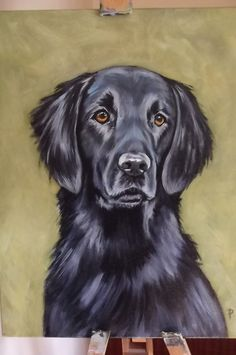 Items similar to Flat Coated Retriever on Etsy : Big Dogs, Large Dogs, Colour Pencil Shading, Flat Coated Retriever, Dog Quilts, Homeless Dogs, Handmade Dog Collars, Purebred Dogs, Dog Paintings