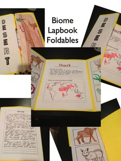 Biomes of the World Lapbook Activity and Unit $