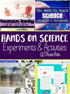 Hands on Science Experiments for kids! Science Activities For Kids, Cool Science Experiments, Hands On Activities, Science Projects, Kid Science, Sensory Activities, Preschool Ideas, Home Teaching, Teaching Science