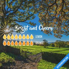Bright and Cheery - Essential Oil Diffuser Blend