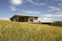 Barn and Dwelling G / Aeby Aumann Emery architectes-so peaceful and clean, amidst the swinging grasses.