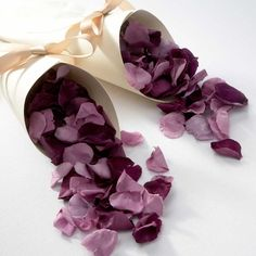 Lilac Mix Rose Petals in Acetate Box
