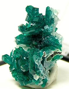 Emerald Green Dioptase Crystal Cluster from by FenderMinerals