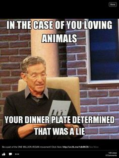 Your dinner plate determined......that was a lie!