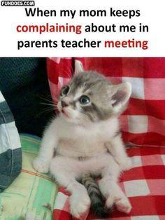 Memes funny love laughing 62 Ideas for 2019 Funny Cute Memes, Memes Funny Faces, Funny Love, Funny Quotes, Funny Humor, Memes Humor, Hilarious Jokes, Cartoon Memes, Funny Happy