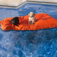 Pet Kai Pool Float Let your pet join in the floating fun with our Pet Kai Pool Float. This versatile float also doubles as a pet bed at home, outdoors, poolside, or at the beach. Made with worry-free Sunbrella ® fabric for years of outdoor enjoyment, this float is completely safe for pets.  Made of marine-grade Sunbrella fabric  Roomy enough for 2-3 small pets or 1 large pet  Stain-, mold-, and mildew-resistant  Fade proof , even in the brightest sunlight  Made in USA. $99.50
