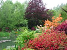 France - Giverny - Monet's Gardens