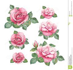 watercolor-illustrations-roses-38379129.jpg (1363×1300)