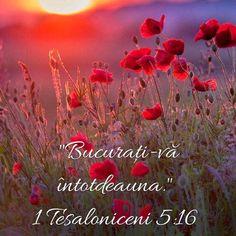 God Loves Me, Spiritual Quotes, Bible Verses, Religion, Spirituality, My Love, Buddha, Roman, Beautiful