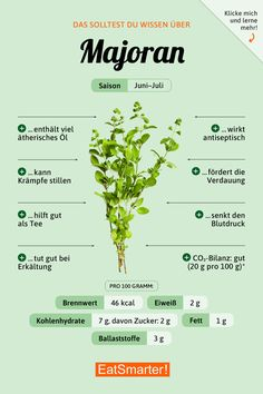 Majoran You should know about marjoram! Weight Loss Detox, Weight Loss Drinks, Wall Paper Iphone, Lemon Drink, Fat Burning Detox Drinks, Le Diner, Calorie Diet, Health And Nutrition, Health Tips