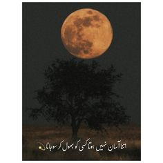 Poetry Quotes In Urdu, Best Urdu Poetry Images, Urdu Quotes, 1 Line Quotes, Feeling Hurt Quotes, Poetry Wallpaper, John Elia Poetry, Poetry Lines, Heart Touching Lines