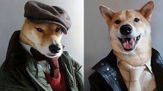 Dünyanın En Şık Giyinen Köpeği: Bodhi