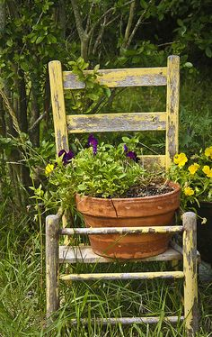Old Chippy Yellow Chair...with a clay pot of flowers.