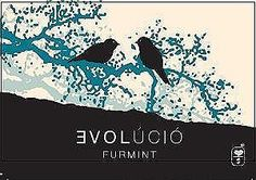 Evolucio Furmint is a delightful white wine gem from the Tokaj region of Hungary, renowned for its dessert wi Premier Wine, Wine Sale, Cheese Shop, Wine And Spirits, Hungary, Mineral, Liquor, White Wines, Alcohol