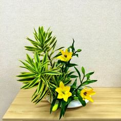 hanamai, the ikebana blog: Ikebana Arrangements by My Students