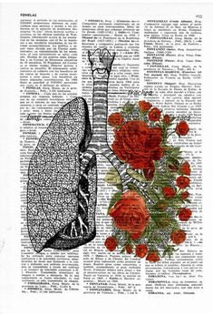 Flowery Lungs human Anatomy Print on dictionary page - boyfriend gift - Anatomy art, love wall art, human anatomy art, lungs and roses art: