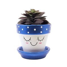 Cute Planter, Face Planter, Terracotta Pot, Succulent Planter, Small Plant Pot, Flower Pot, Indoor Planter, Succulent Pot, Blue Planter  { details }  Add a cute touch to your home or office with this unique handpainted terracotta pot with cute face and metallic pink cheeks by Timberline Studio. Perfect for small indoor plants such as air plants, succulents, or cacti (or a faux one, if you prefer). Looks beautiful in a sunny window.  This planter features an adorable handpainted face with…