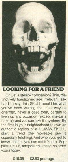 Authentic replica human skull.