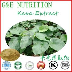 Certified GMP factory supply kava extract 10:1 700g