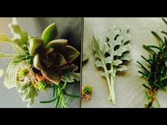 How to make a small pin on Succulent Corsage Succulent Corsage, Corals, Design Tutorials, Floral Design, Succulents, Make It Yourself, Youtube, Flowers, Plants