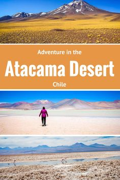 Coca leaves, flamingoes and Pachamama help create the ultimate adventure in Chile's Atacama Desert.