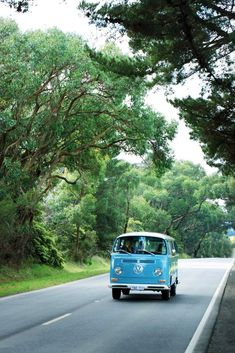 Fun KOMBInation! ( Group Package) - go riding in a chauffer driven Kombi van through the Yarra Valley wine regions.