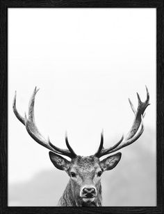 Produktinformationen III · Glas, Papier, Holzwerkstoff · mehrfarbig · Made in Germany Hirsch Tattoo, Deer, Moose Art, Artwork, Design, Animals, Paper, Decorating Ideas, Creative